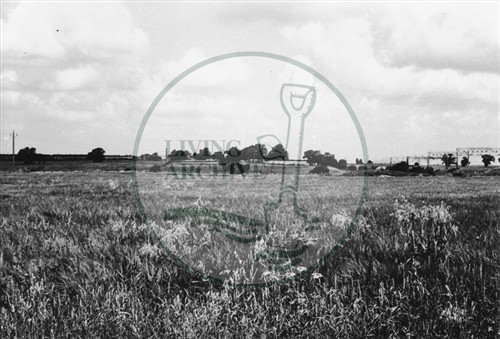 Photograph of land between Bradwell Abbey and Stacey Hill Farm (1971).