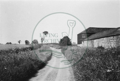 Photograph of fields outside Loughton village (1971).