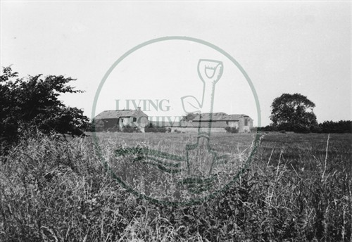 Photograph of derelict farm on land now Central Milton Keynes (1971).