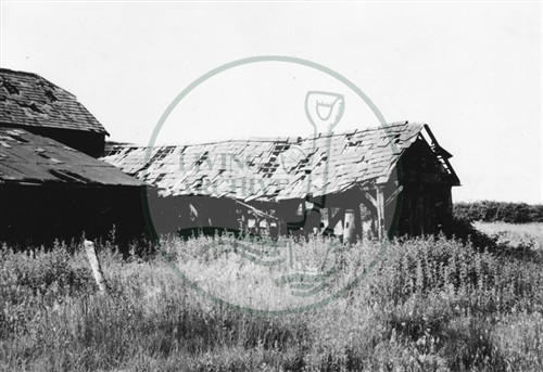 Photograph of derelict barn on land now Central Milton Keynes (1971).
