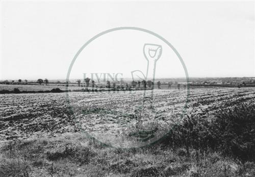 Photograph of farmland behind Old Bradwell (1971).