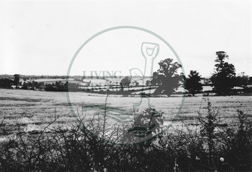 Photograph of farmland near behind Old Bradwell (1971).