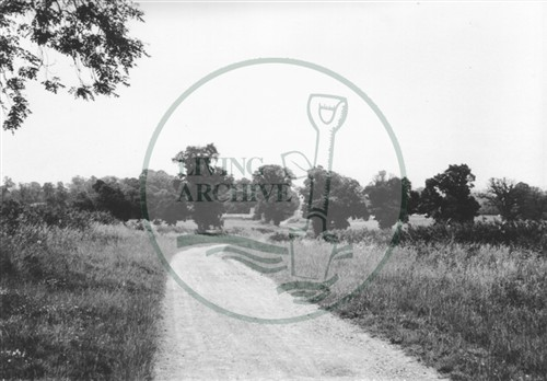 Photograph of country lane looking towards Woughton (1971).