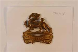 Royal Berkshire Regiment brass cap badge.