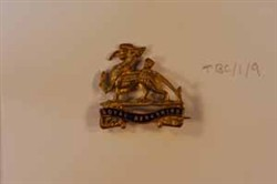 Royal Berkshire Regiment  lapel badge.