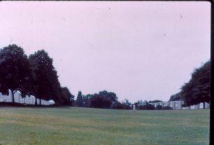 Netherfield Landscape
