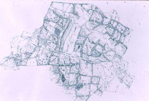 Designated Area Landscape
