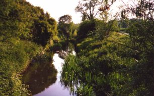 Bradwell Brook