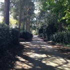View of The Avenue, Aspley Guise