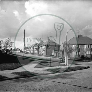 Housing on the Trees Estate. Illustrative photograph supplied by kind permission of Raymond Lubbock.
