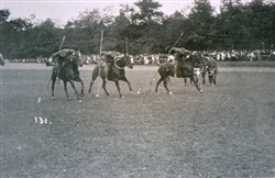 Slide of a horseback contest.