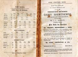 Stock Sale Catalogue