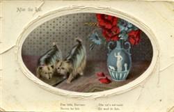 Illustrated  photograph
