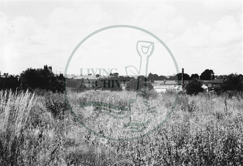 Photograph of Old Bradwell derelict nursery gardens (1971).