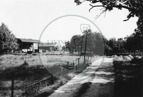 Photograph of farm at Loughton (1971).