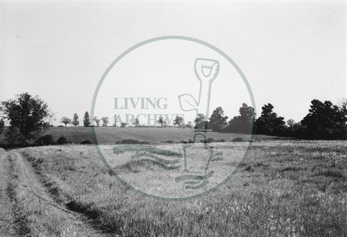 Photograph of farmland now Campbell Park (1971).