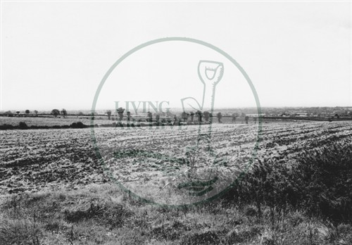 Photograph of farmland behind Old Bradwell (1971).