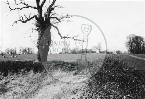 Photograph of Westbury Farm Shenley Brook End 1975.