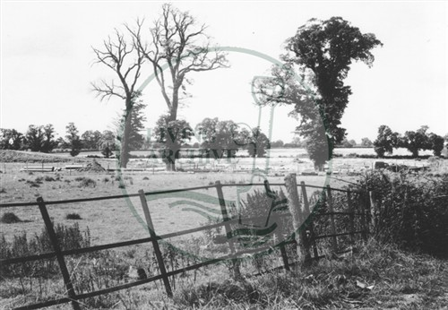 Photograph of fields from Peartree Bridge (1971).