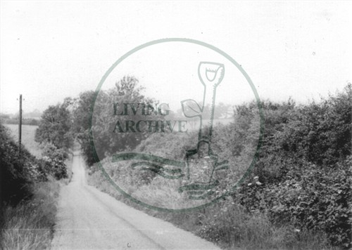 Photograph of country lane between Great Linford and Woolstone (1971).