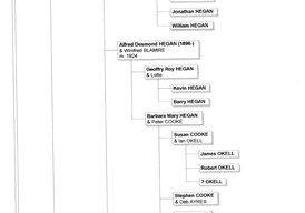Brown Family Descendant Chart.