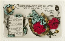Congratulations and all Good Wishes on your Silver Wedding Day