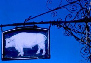 Bull Hotel Sign