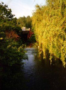 Bradwell Brook