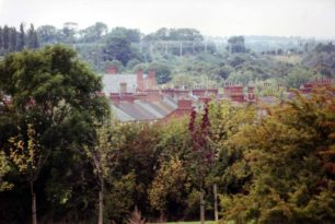 New Bradwell rooftops and trees
