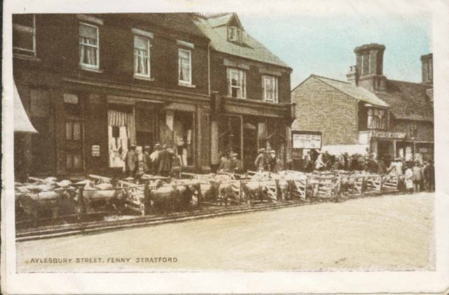 Sheep market in Aylesbury Street in front of Moss's shop
