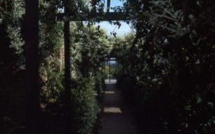 Oldbrook play area garden