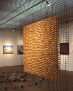 3D free hanging wire mesh with wooden pegs