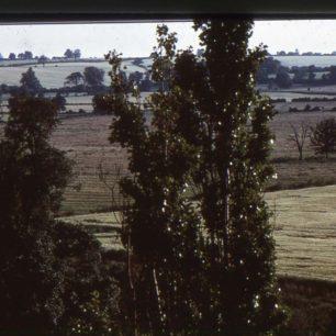 Fields at Willen