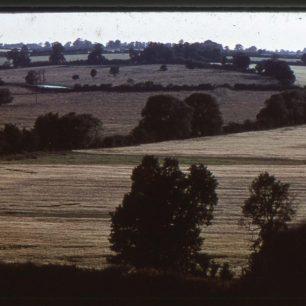 Fields and trees near Willen