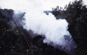 The steam train nicknamed Nobby Newport