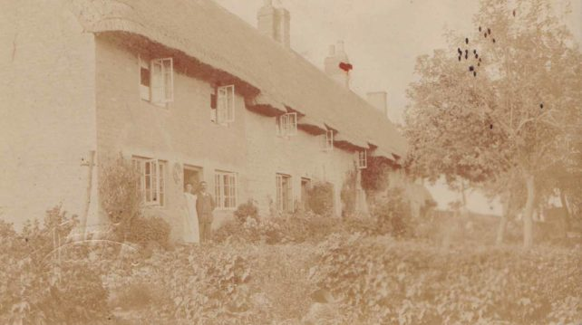 Terrace of thatched cottages