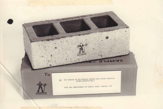 The prize for a Brick-Throwing Championship