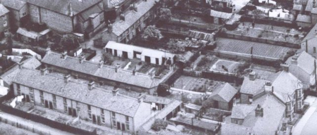 Aerial view of Woodbine Terrace